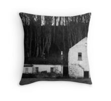 The house and the barn Throw Pillow