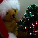 Mr Ted & The Tree by Sharon Brown