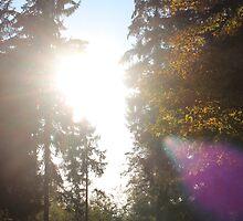 Autumn Sun by Riice
