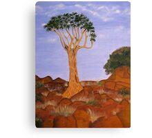 Quiver Tree Canvas Print
