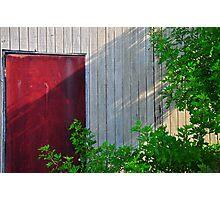 Back Door Photographic Print