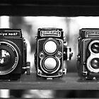 Vintage Cameras by Justine Gordon