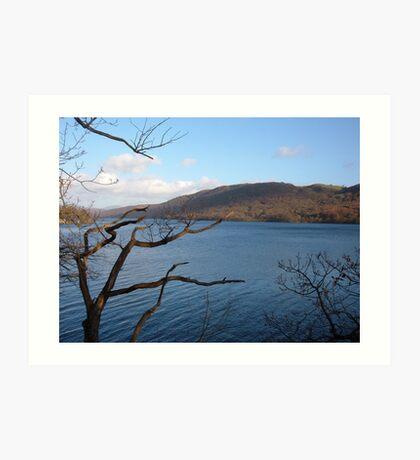 view across the lake Art Print