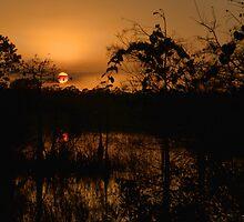 Winter Everglades Sunset by JKKimball