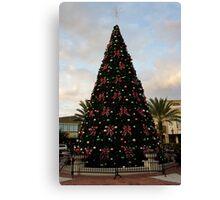 A Florida Tree Canvas Print