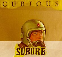 curious suburb by steve jones