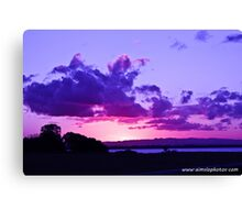Excuse Me, While I Kiss The Sky Canvas Print