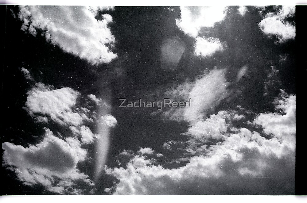 00295 by ZacharyReed