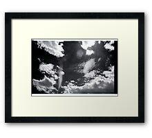 00295 Framed Print
