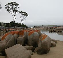 Seascape, Binalong Bay, Tasmania, Australia. by kaysharp