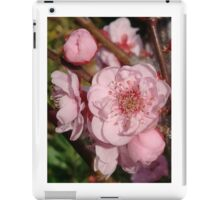 Happy Spring Blossoms iPad Case/Skin