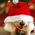 Christmas Puppy by ieatstars