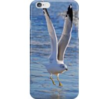 Seagull Taking Off iPhone Case/Skin