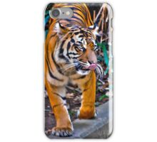 Tiger Pacing iPhone Case/Skin