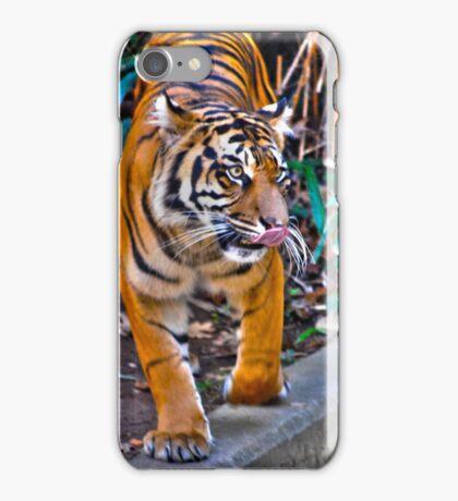 Tiger Pacing iPhone Case/Skin