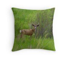 Deer in Eastern Oregon Throw Pillow