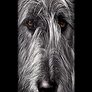 Wolfhound iPhone case by Elena Kolotusha