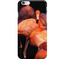 Flamingos iPhone Case/Skin