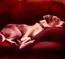Jasper on Red Couch by Acey Thompson