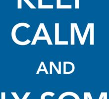 Keep Calm and Fly Some Plane [Sticker] Sticker