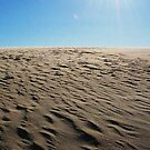 Jockey's Ridge by Robin Lee