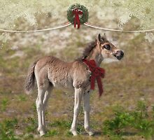 Wild promise of Christmas by Owed To Nature