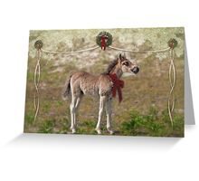 Wild promise of Christmas Greeting Card