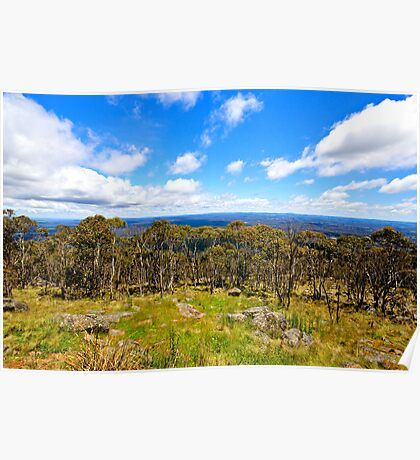 view from Mount Macedon Poster