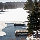 The Dock in Winter by Debra Fedchin