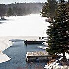 The Dock in Winter by Debra Fedchin
