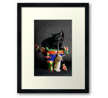 Rat Cat Framed Print