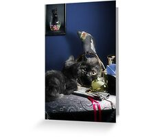 Mirror, Mirror... Greeting Card