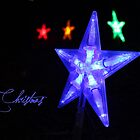 Christmas Star by Amy Dee