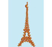 La Tour Des Croissants Photographic Print