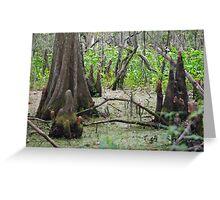 Swamp Floor Greeting Card