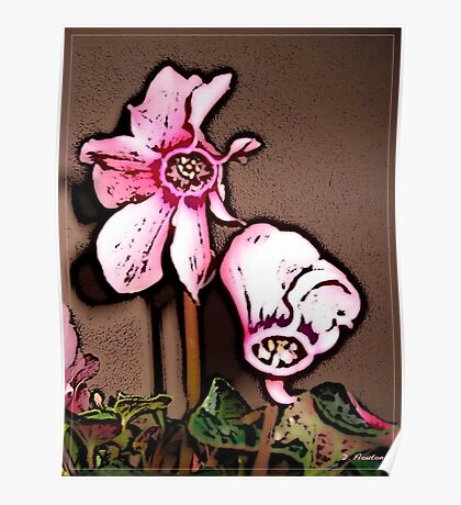 Cyclamen Whimsy Poster