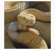 Albino Western Diamondback Rattlesnake - USA Baby Tee