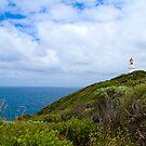 Cape Schank Lighthouse by Bevlea Ross