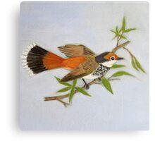 Rufous Fantail Canvas Print