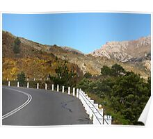 Queenstown hill colour Poster
