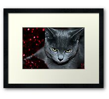 How long do I have to wait? Framed Print