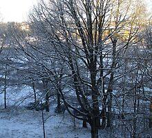 First Snow Morning in Växjö by izotopo