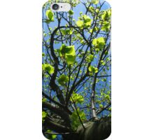 Tree of Life iPhone Case iPhone Case/Skin