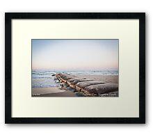 Cotton Tree, Sunshine Coast Framed Print
