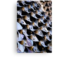 Metal Weave Canvas Print
