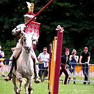 There they are the jousting knights! by patjila