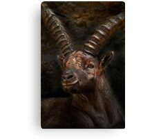 Ibex - Photoshop Manipulation Canvas Print