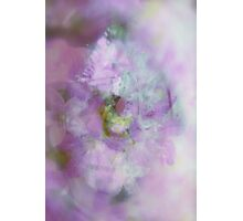 See the World through Flowers - JUSTART © Photographic Print