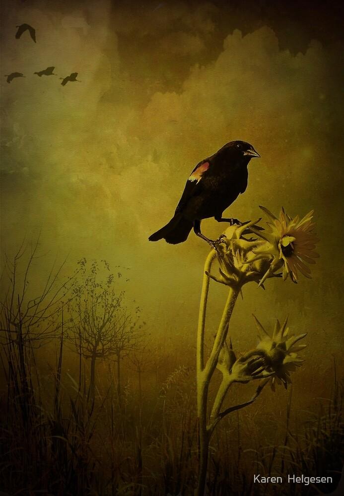Seasons Change... by Karen  Helgesen