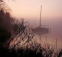 Warm Fog by Eileen McVey